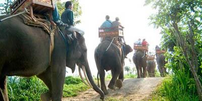 tiket wisata naik gajah via joglo bali tours